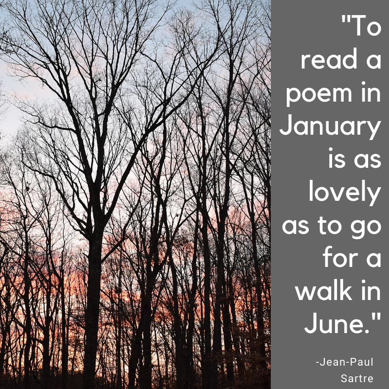 _To read a poem in January is as lovely as to go for a walk in June._.png
